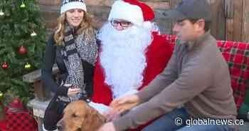 Kelowna pets posing with Santa to support the SPCA