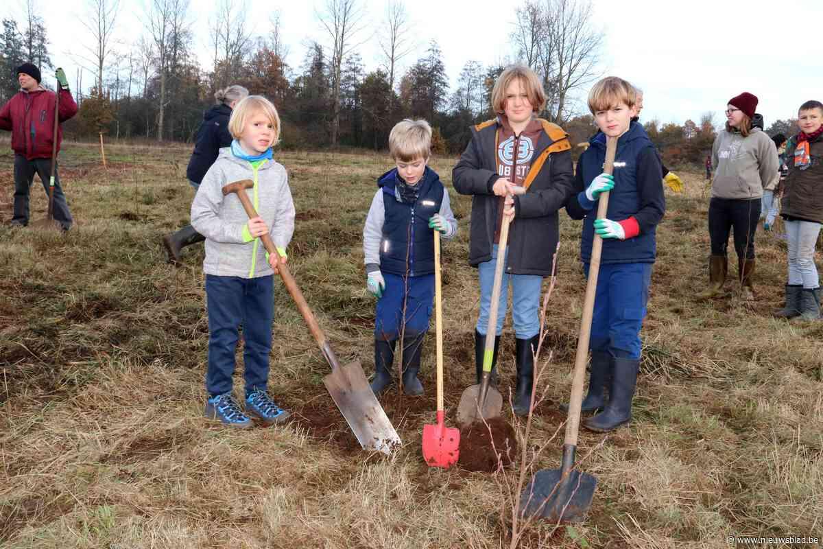 Natuurpunt plant 1.600 bomen om meer vogels naar Dassenaarde te lokken