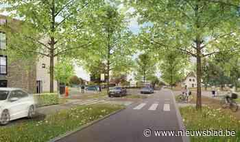Herinrichting van zes kruispunten en nieuwe verbindingsweg moeten van stadslaan een feest voor de zwakke weggebruiker maken