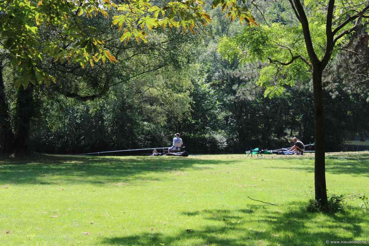 Meise wil 2.500 extra bomen tegen 2024
