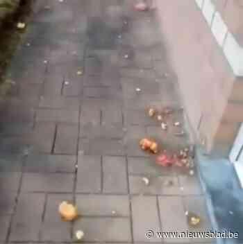 Politie start onderzoek wie tomaten naar woning gooide