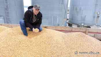 Farmers eager to get harvest back on track