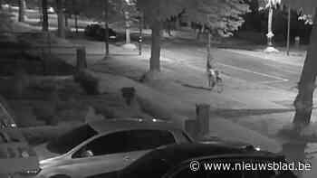 VIDEO. Verdachte van valse bommelding in scholen Aarschot, Diest en Westerlo blijft in de cel