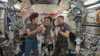 Space Stuffing? Here's What Astronauts Will Eat in Orbit This Thanksgiving
