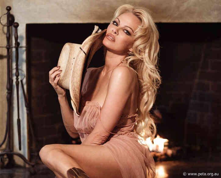 Pamela Anderson Makes Bushfire Plea While Visiting the Gold Coast