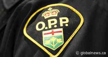 Man facing charges after vicious dog attack sent three children to hospital: OPP