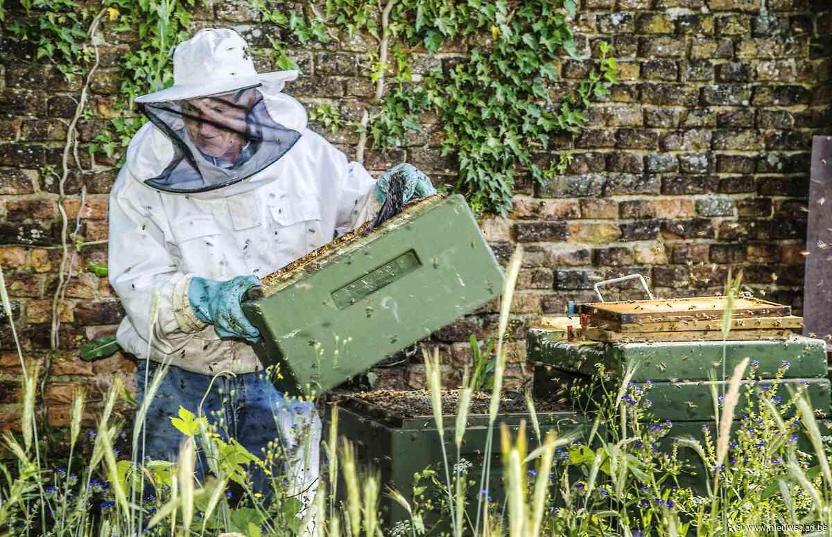 Lokale imker moet omgeving aantrekkelijk maken voor bijen