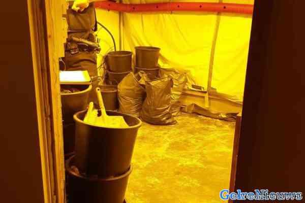 Verdachte aangehouden bij hennepkwekerijen in woonwijk Elst