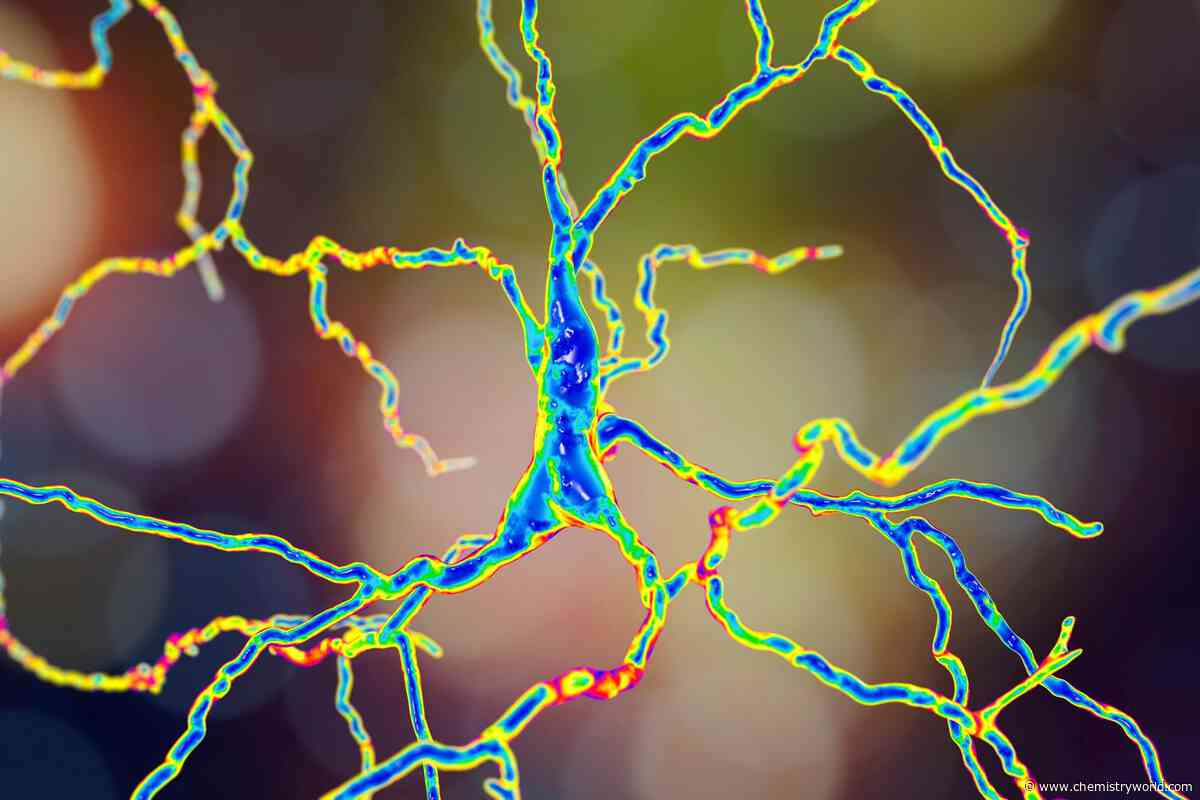 Spectroscopic biomarkers track Huntington's disease progression
