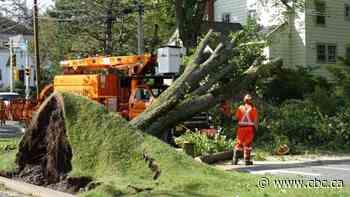 Nova Scotia Power says Dorian was its most damaging storm ever