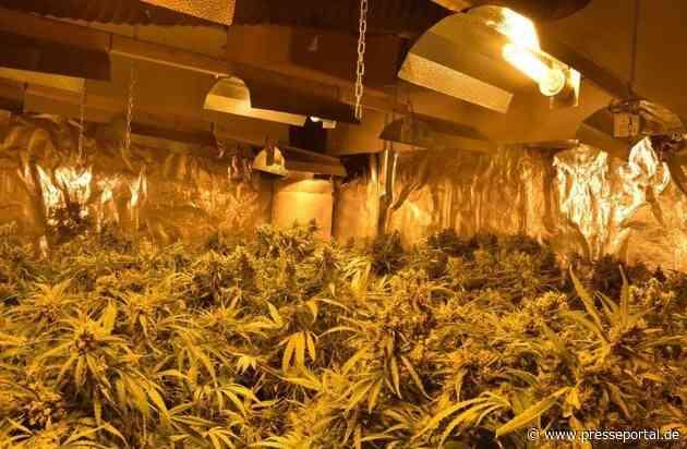 POL-W: W - Gemeinsame Presseerklärung der Staatsanwaltschaft und der Polizei: Weitere Schläge gegen den illegalen Anbau von Marihuanapflanzen