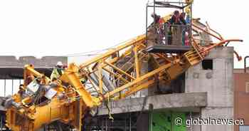 Removing crane downed in Halifax during Dorian cost $2 million: minister