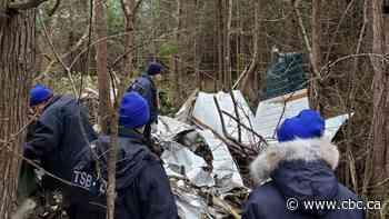 Toronto-area couple among 7 killed in Kingston, Ont., plane crash