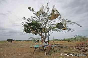 Kan klimaatconferentie COP25 ambitieuzere doelstellingen voortbrengen?