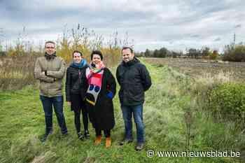 Eerste 9.000 bomen staan klaar, Krommebeekbos zal Beverse wijken verbinden