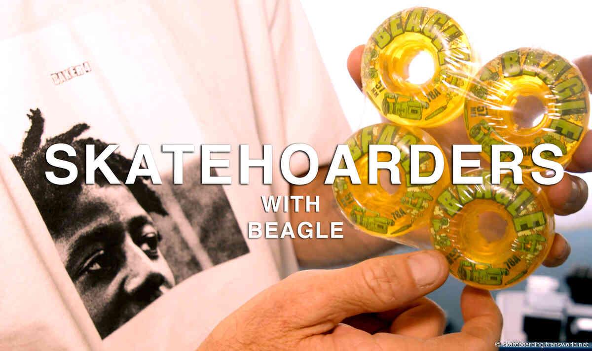 SkateHoarders | Beagle
