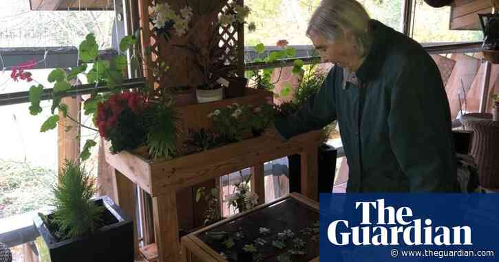 'I'm in touch with nature': the care homes connecting residents with the outdoors