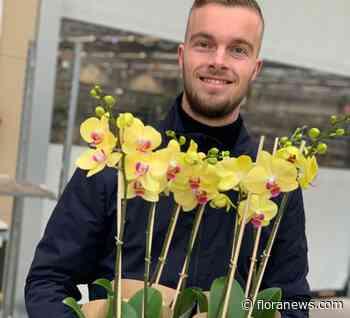 Fijnmazige distributie van biologische bloemen en planten binnen de veiling