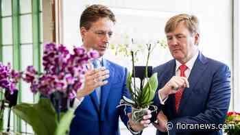 VS steeds populairder als afzetmarkt voor Nederlandse exporteurs