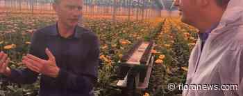 D66 bezoekt Holstein Flowers in kader van warmtetransitie