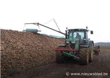 """Suikerbiettelers voeren """"Operatie Rouwband"""" tijdens Agribex"""