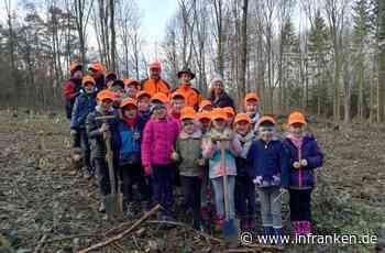 Weismainer Schüler legen den Wald der Zukunft an