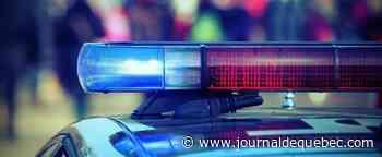 Attaque au couteau dans une rue commerçante de La Haye, «plusieurs blessés»