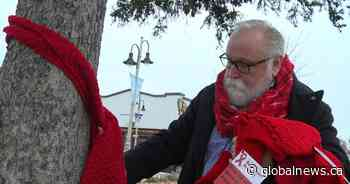 Red scarves wrap downtown Oshawa for HIV and AIDS awareness