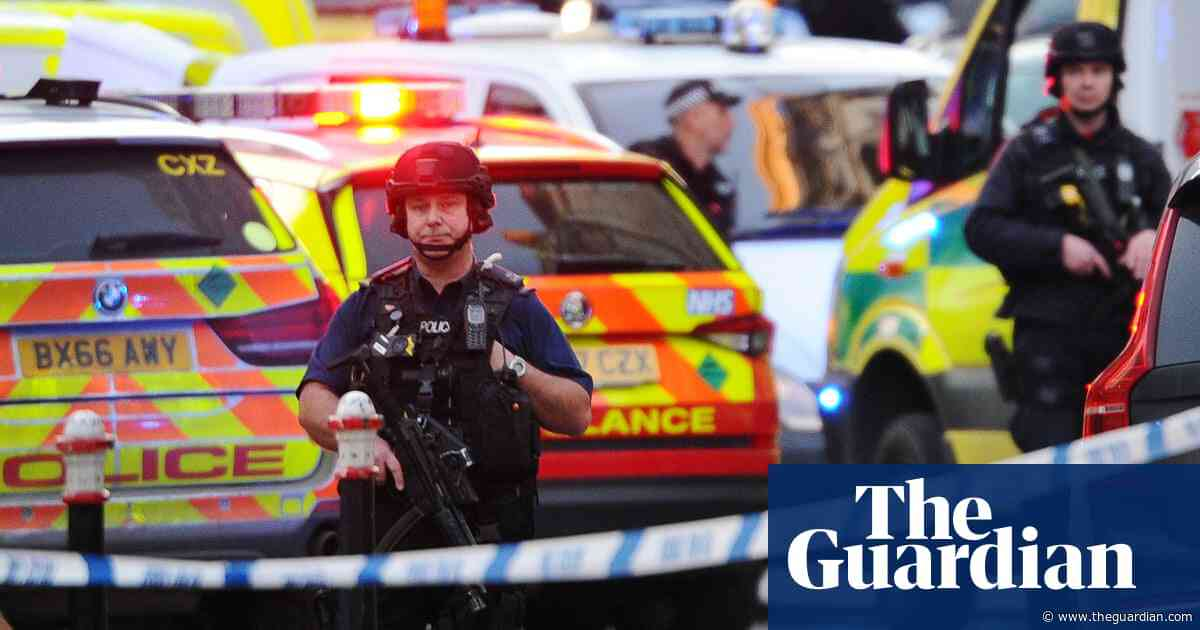 London Bridge attack: swift review of violent crime sentences pledged