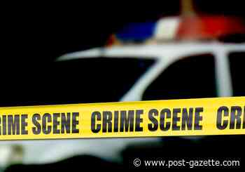 Shot fired at Homewood residence
