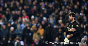 Liverpool player ratings - Van Dijk is Reds' talisman but Alisson loses his head against Brighton