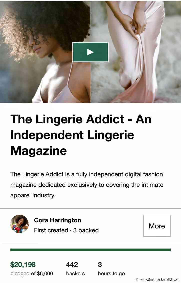 Last Call: Only 3 Hours Left for The Lingerie Addict Kickstarter!