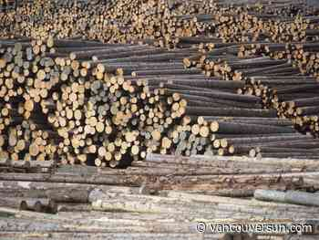 B.C. forest industry facing uncertain future as mills close across province