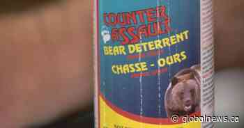 Regina teen facing weapon charge after revealing bear spray to woman
