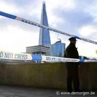Britse politie pakt terreurverdachte op