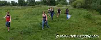 Groene trainees zetten zich in voor natuur en duurzaamheid