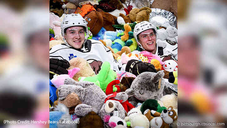 Hershey Bears Collects Record-Breaking 45,650 Stuffed Animals For Local Charities