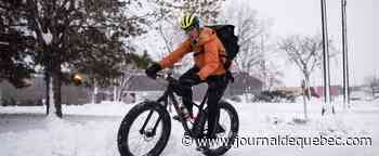 De plus en plus de cyclistes dans la ville de Québec