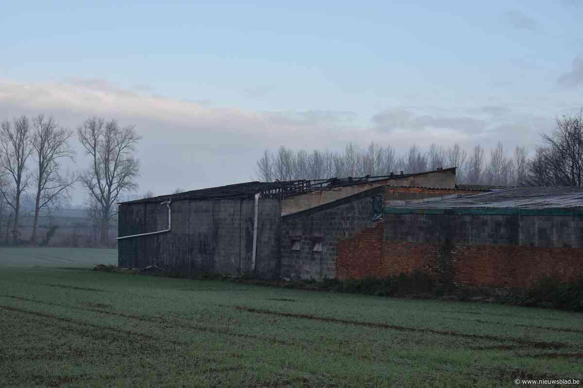 Ook asbest vrijgekomen bij stalbrand die honderden hooibalen vernielt