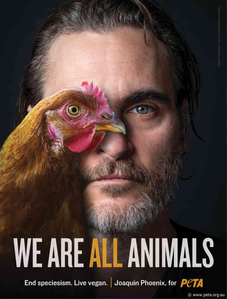 Kind and Committed: Joaquin Phoenix Is PETA's Person of the Year
