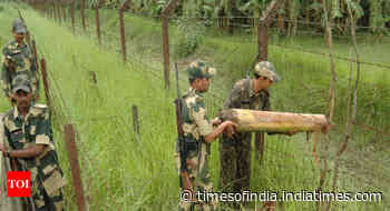 Bengal: BSF flags Rohingya infiltration worry