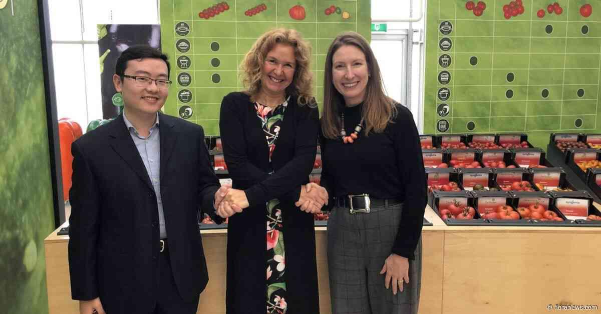 Adviesbureau Dutch Sino sluit als partner aan bij Tomatoworld