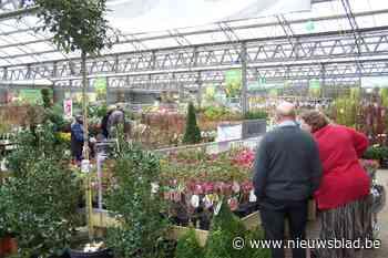 Oorlog tussen Kempense tuincentra luwt niet: Concurrenten Pelckmans eisen ruim 1 miljoen euro schadevergoeding