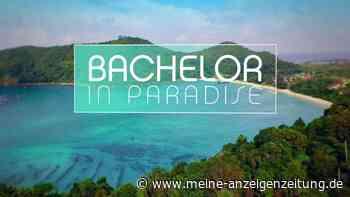 """""""Bachelor in Paradise"""" 2019: Wer ist raus? Wer ist noch dabei im Paradies?"""