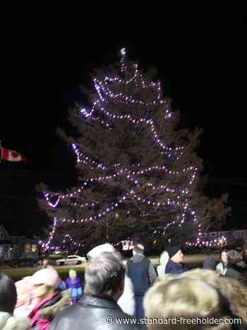 Magical night for kids and community in Ingleside, at tree lighting