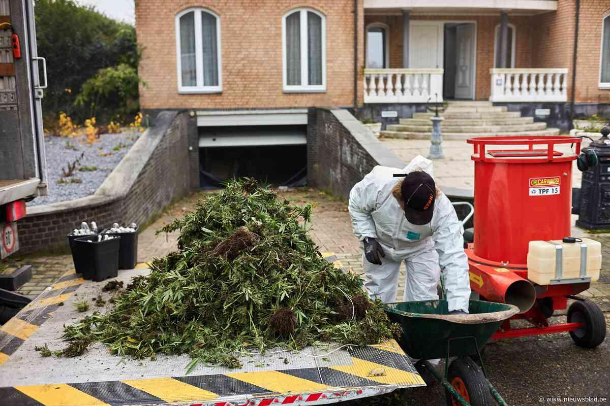 Hypermoderne wietplantagegevonden in villa