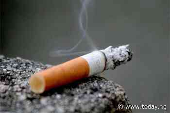 Mongolia launches national anti-smoking campaign