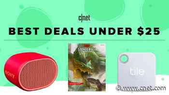 Best gifts under $25 in 2019: Stocking stuffers and more (updated)     - CNET