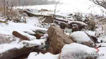 Wetland battle in Hudson
