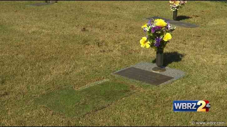 'He would have loved this': Family plants Tiger Stadium turf over LSU superfan's grave